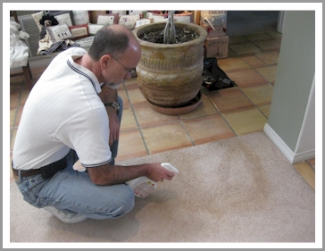 We usea Non-Toxic Spot Remover to treat all carpets